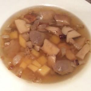 Cep Penny bun Russian mushroom soup